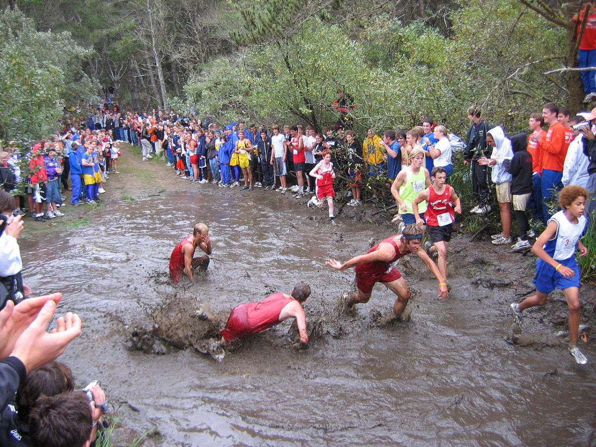 Lets Go Country! Top Online Articles on Cross Country Running